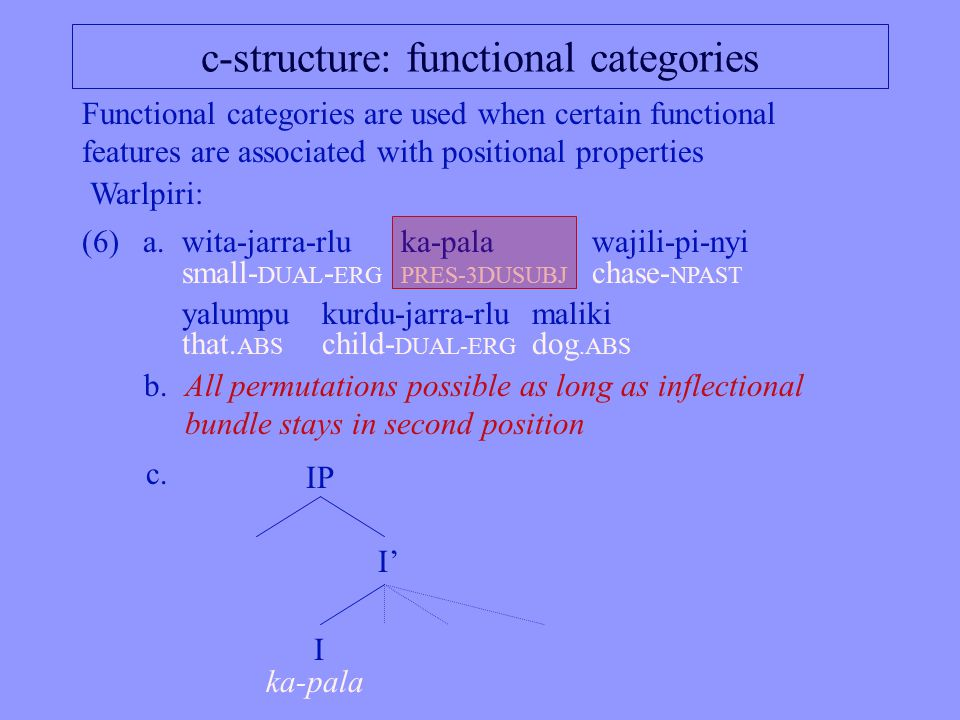 c-structure: functional categories Functional categories are used when certain functional features are associated with positional properties (6)a.wita-jarra-rluka-palawajili-pi-nyi small- DUAL - ERGPRES-3DUSUBJ chase- NPAST yalumpu kurdu-jarra-rlumaliki that.