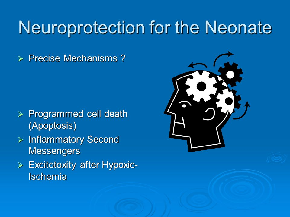 Neuroprotection for the Neonate  Precise Mechanisms ?  Programmed cell death (Apoptosis)  Inflammatory Second Messengers  Excitotoxity after Hypox