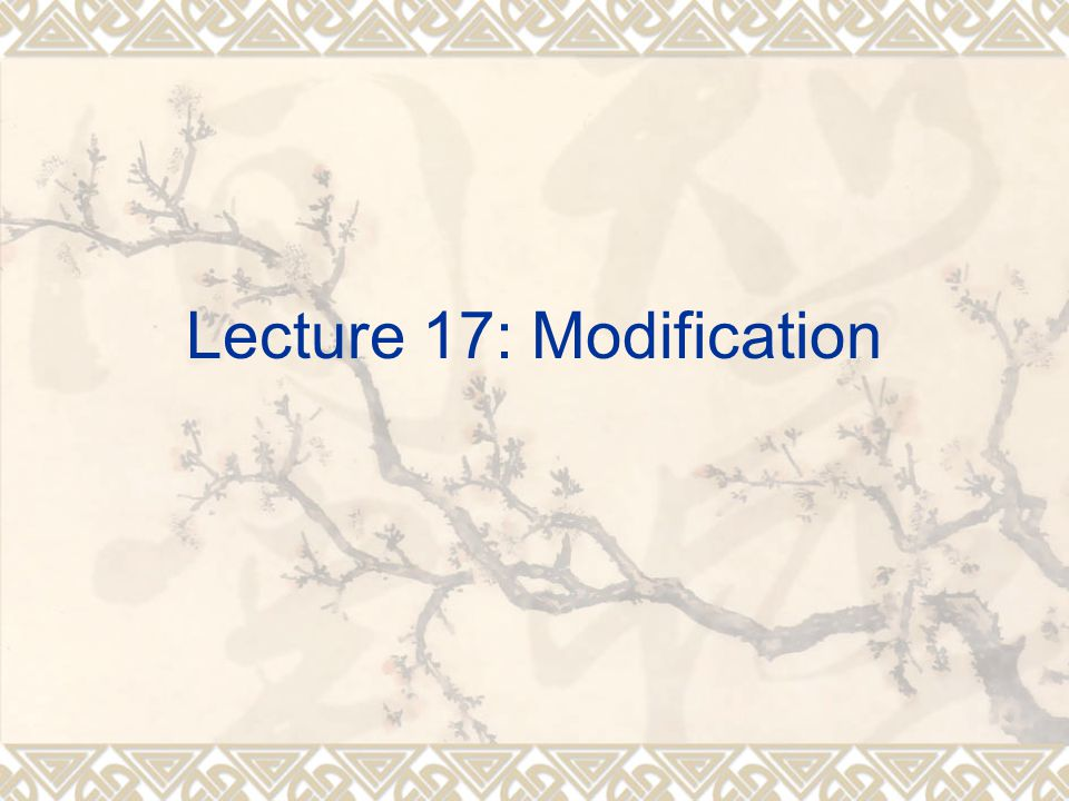 Lecture 17: Modification