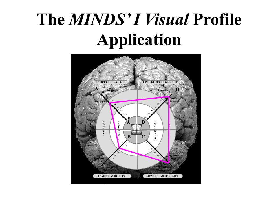 The MINDS' I Visual Profile Application A CB D