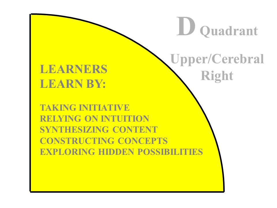 LEARNERS LEARN BY: TAKING INITIATIVE RELYING ON INTUITION SYNTHESIZING CONTENT CONSTRUCTING CONCEPTS EXPLORING HIDDEN POSSIBILITIES D Quadrant Upper/Cerebral Right