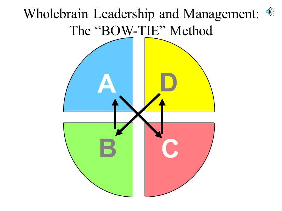 A D B C Wholebrain Leadership and Management: The BOW-TIE Method
