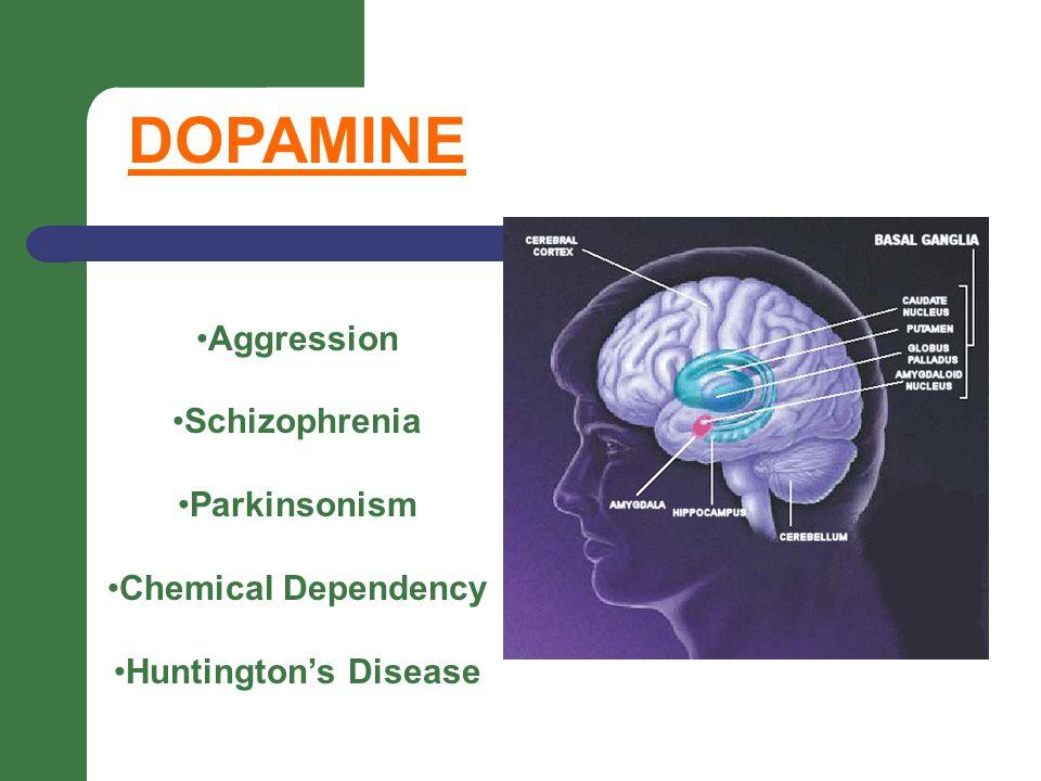 DOPAMINE Aggression Schizophrenia Parkinsonism Chemical Dependency Huntington's Disease
