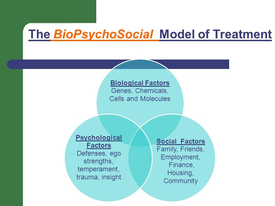 The BioPsychoSocial Model of Treatment Biological Factors Genes, Chemicals, Cells and Molecules Social Factors Family, Friends, Employment, Finance, Housing, Community Psychological Factors Defenses, ego strengths, temperament, trauma, insight