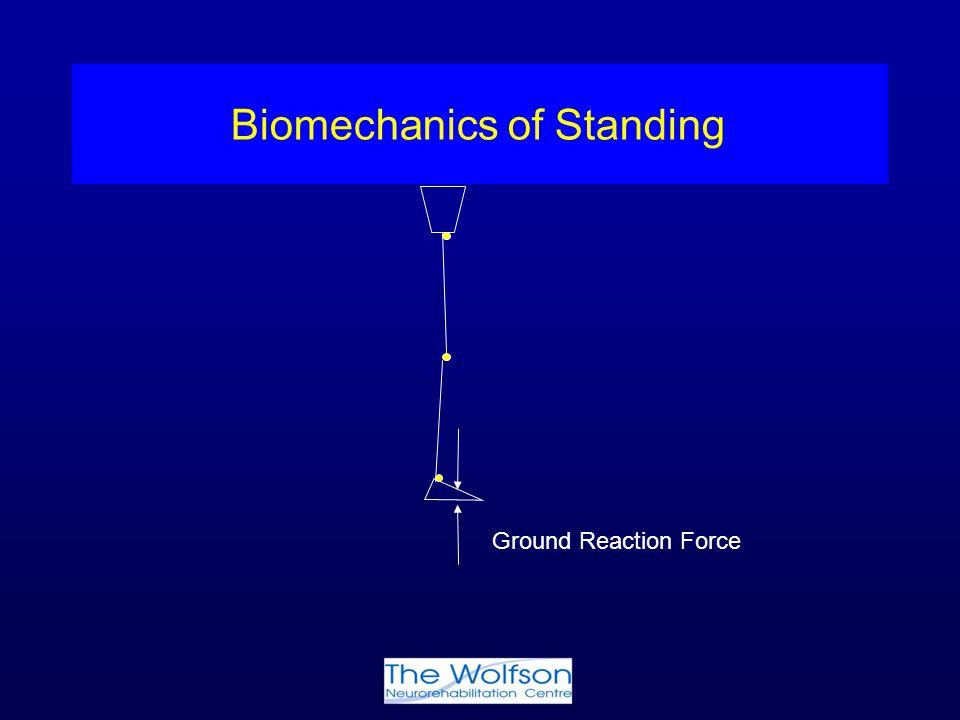 Biomechanics of Standing Ground Reaction Force