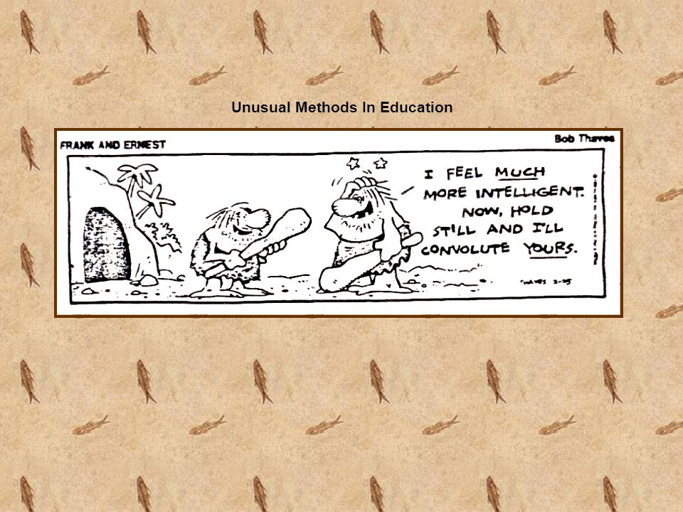 Unusual Methods In Education