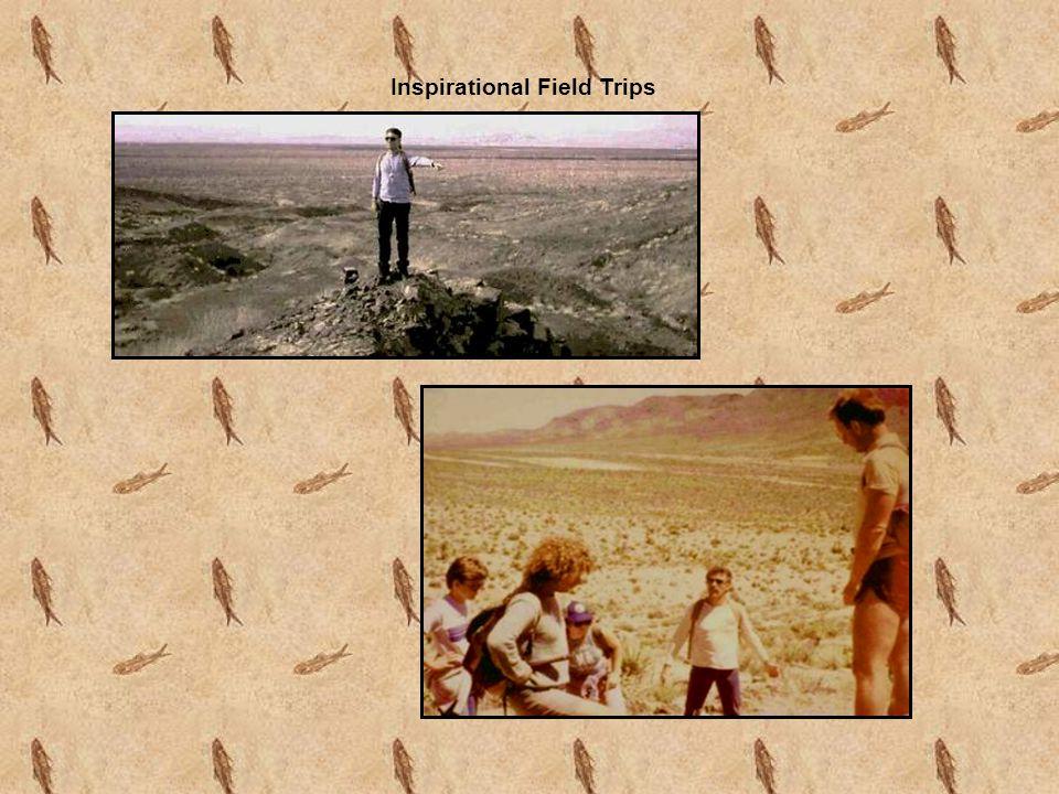 Inspirational Field Trips