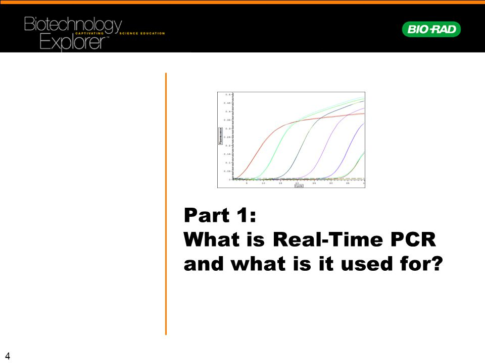 45 Part 4: What does actual real-time data look like, and what are melt curves?