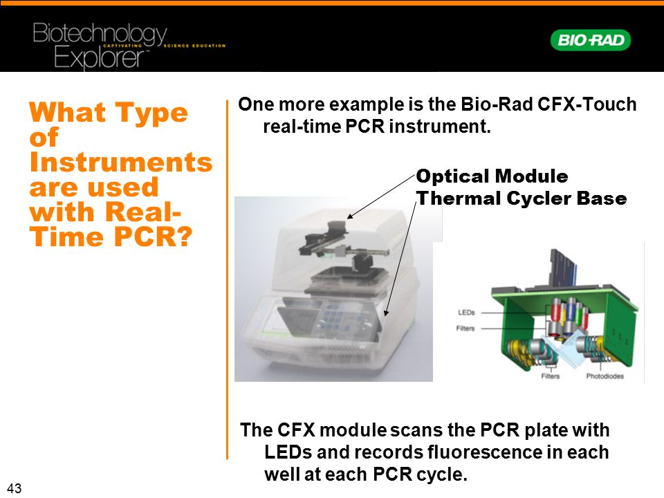 43 What Type of Instruments are used with Real- Time PCR? The CFX module scans the PCR plate with LEDs and records fluorescence in each well at each P