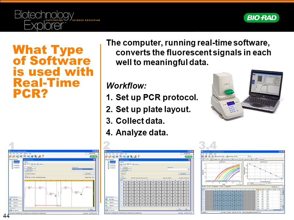 44 What Type of Software is used with Real-Time PCR? The computer, running real-time software, converts the fluorescent signals in each well to meanin