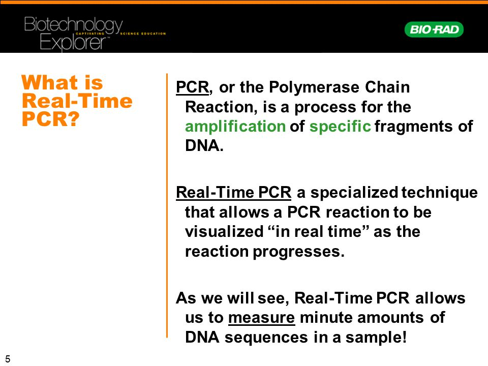 5 What is Real-Time PCR? PCR, or the Polymerase Chain Reaction, is a process for the amplification of specific fragments of DNA. Real-Time PCR a speci