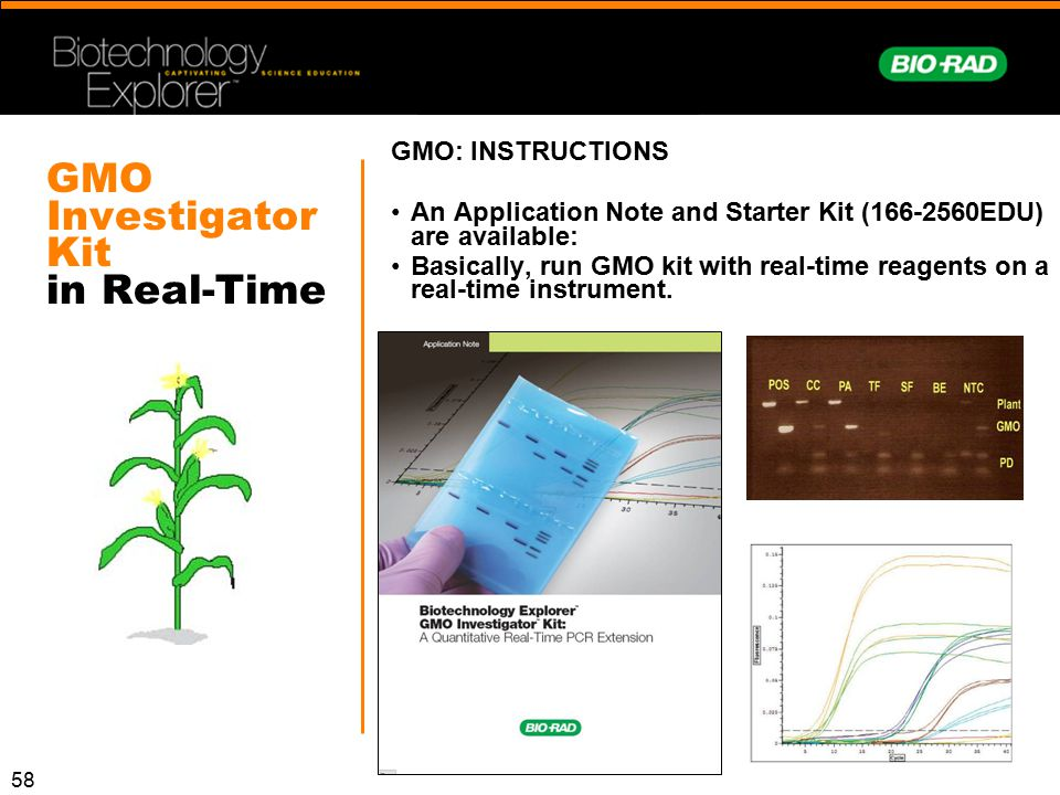 58 GMO Investigator Kit in Real-Time GMO: INSTRUCTIONS An Application Note and Starter Kit (166-2560EDU) are available: Basically, run GMO kit with re