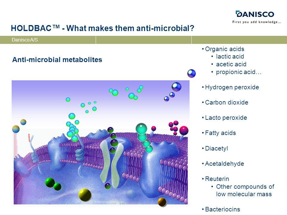Danisco A/S HOLDBAC ™ - What makes them anti-microbial.