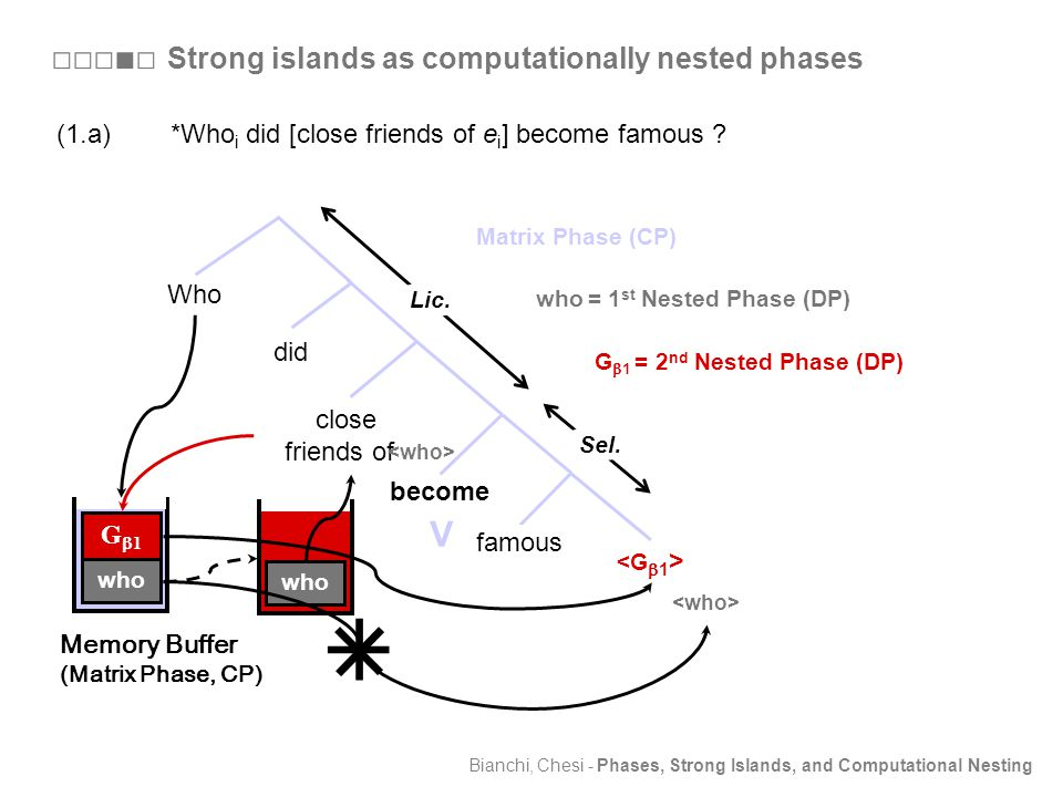 Bianchi, Chesi - Phases, Strong Islands, and Computational Nesting Who become did close friends of e G  1 = 2 nd Nested Phase (DP) V Matrix Phase (CP) Sel.