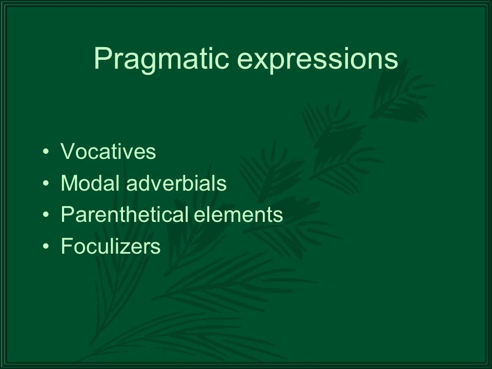 Pragmatic expressions Vocatives Modal adverbials Parenthetical elements Foculizers