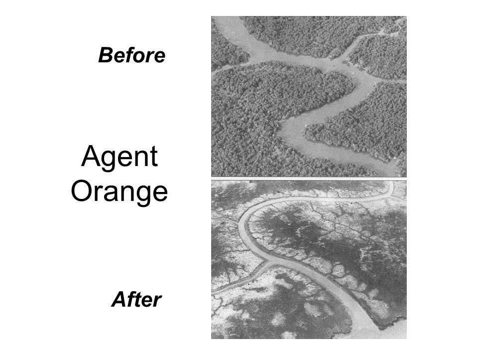 Before Agent Orange After