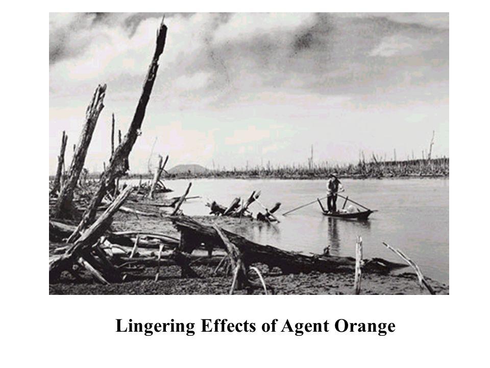 Lingering Effects of Agent Orange