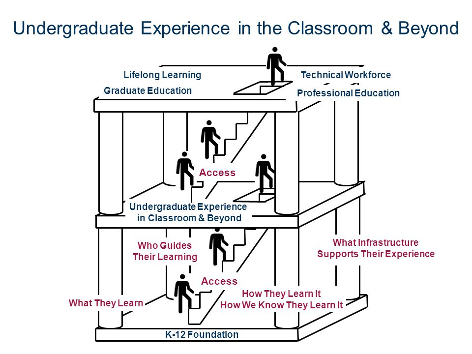 Undergraduate Experience in the Classroom & Beyond K-12 Foundation Undergraduate Experience in Classroom & Beyond What Infrastructure Supports Their E