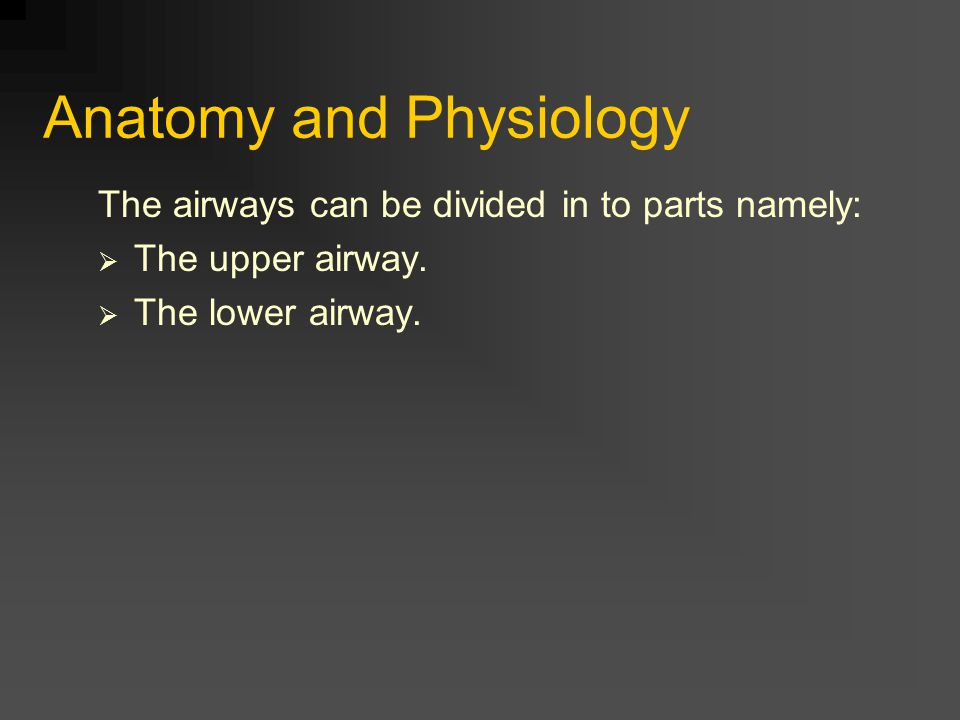 Anatomy and Physiology The airways can be divided in to parts namely:  The upper airway.