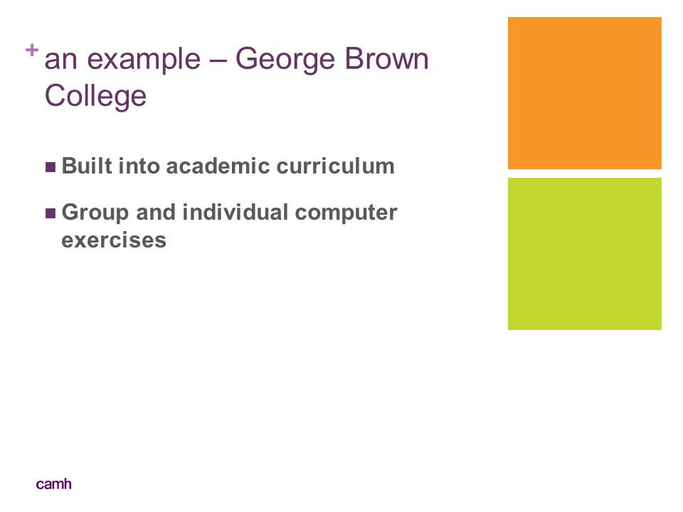 + an example – George Brown College Built into academic curriculum Group and individual computer exercises