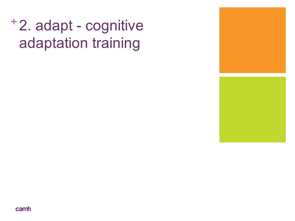 + 2. adapt - cognitive adaptation training