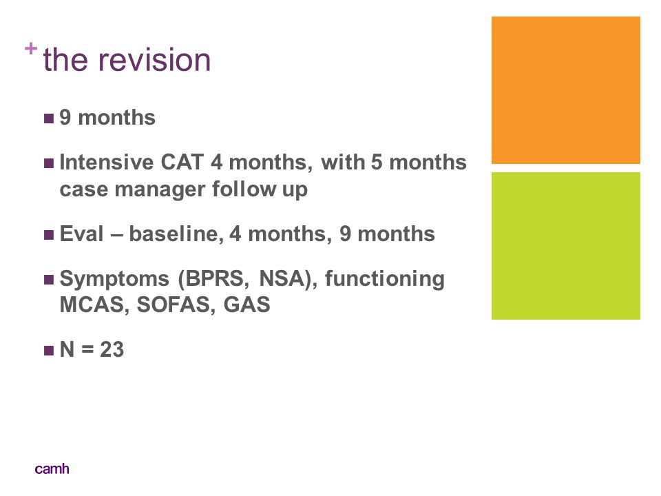 + the revision 9 months Intensive CAT 4 months, with 5 months case manager follow up Eval – baseline, 4 months, 9 months Symptoms (BPRS, NSA), functio
