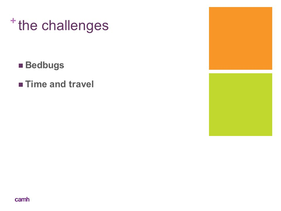 + the challenges Bedbugs Time and travel