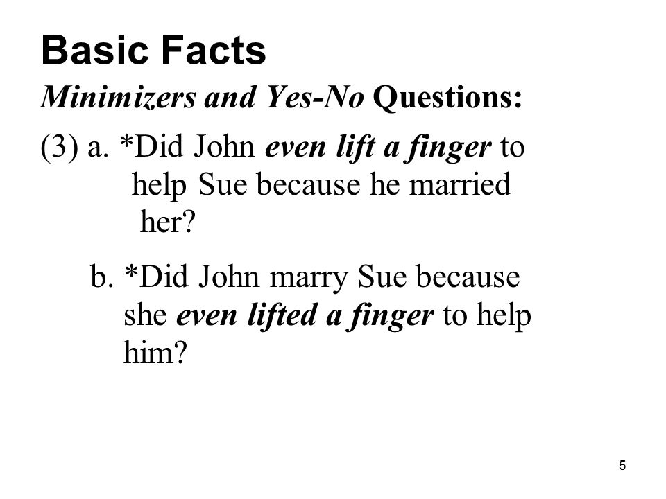 5 Basic Facts Minimizers and Yes-No Questions: (3) a.