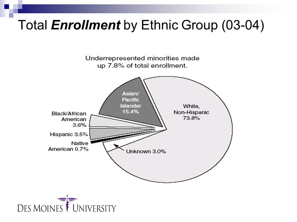 Total Enrollment by Ethnic Group (03-04)