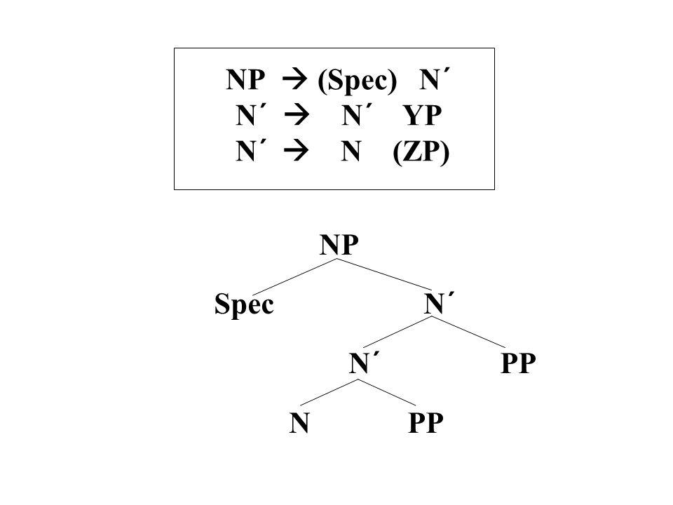 NP  (Spec) N´ N´  N´ YP N´  N (ZP) NP Spec N´ N´ PP N PP