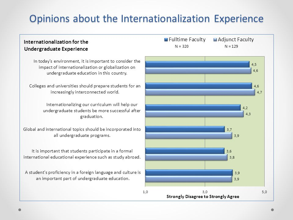 Opinions about the Internationalization Experience
