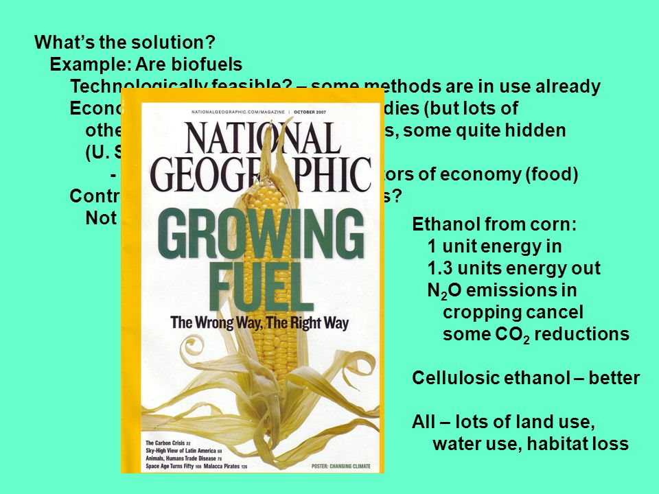 What's the solution. Example: Are biofuels Technologically feasible.
