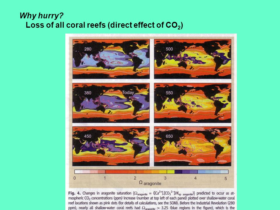 Why should we invest in controlling CO2, other greenhouse gases, and the resultant global warming.