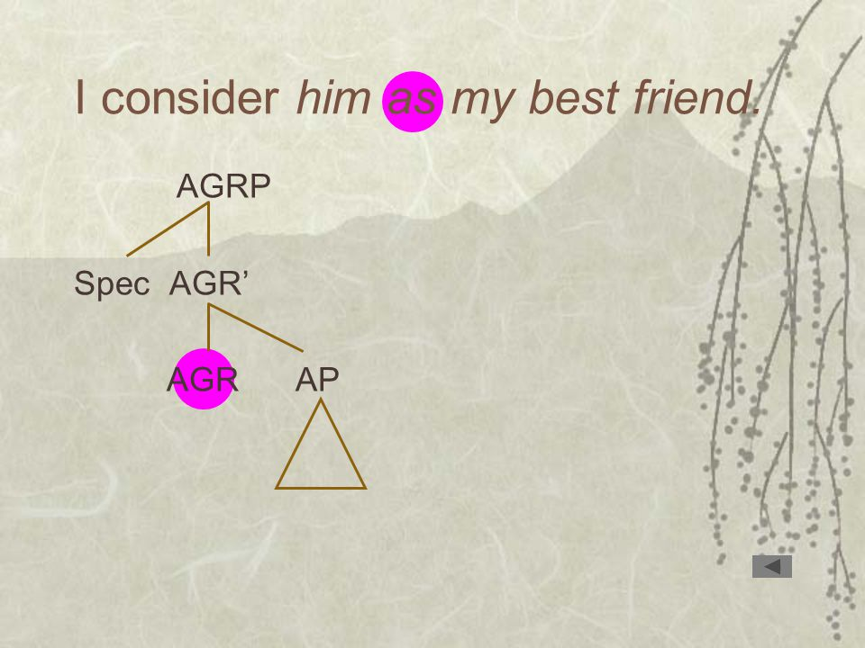I consider him as my best friend. AGRP Spec AGR' AGR AP