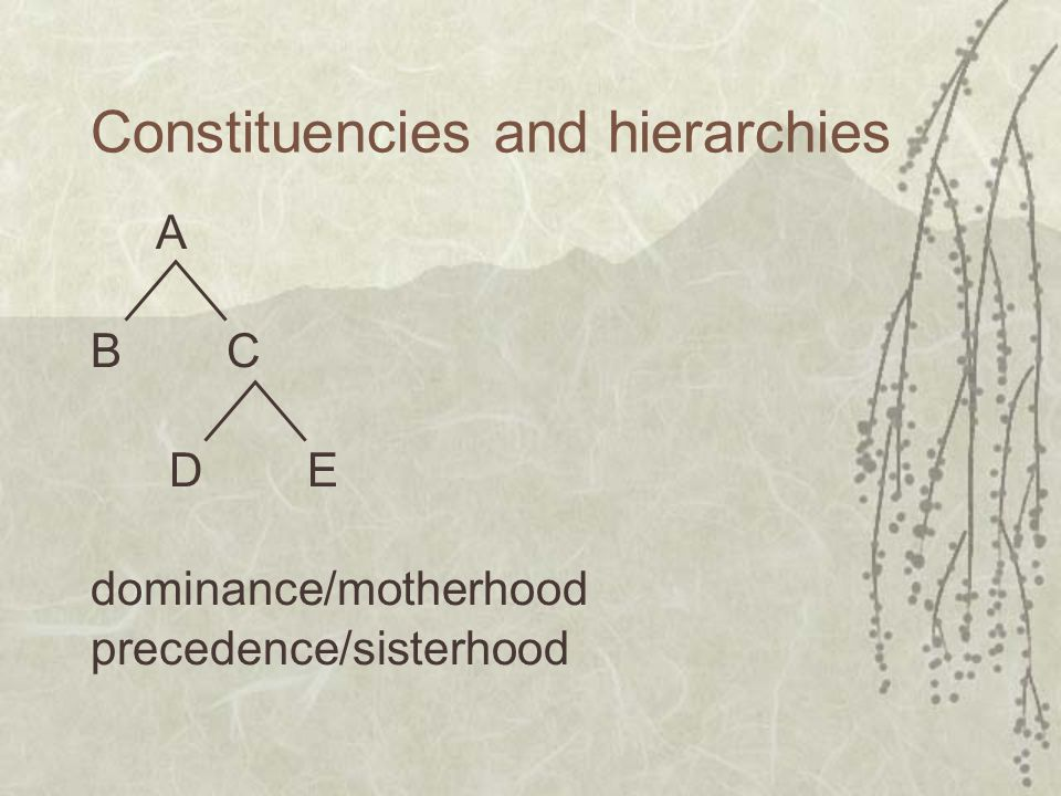 Constituencies and hierarchies A B C D E dominance/motherhood precedence/sisterhood