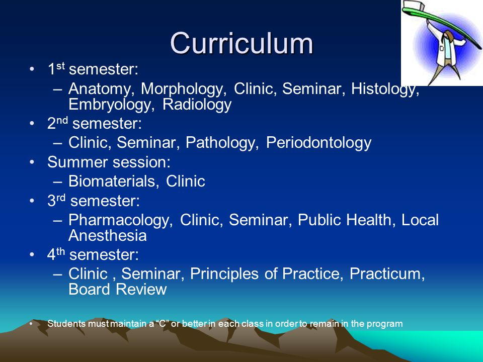 Curriculum 1 st semester: –Anatomy, Morphology, Clinic, Seminar, Histology, Embryology, Radiology 2 nd semester: –Clinic, Seminar, Pathology, Periodontology Summer session: –Biomaterials, Clinic 3 rd semester: –Pharmacology, Clinic, Seminar, Public Health, Local Anesthesia 4 th semester: –Clinic, Seminar, Principles of Practice, Practicum, Board Review Students must maintain a C or better in each class in order to remain in the program