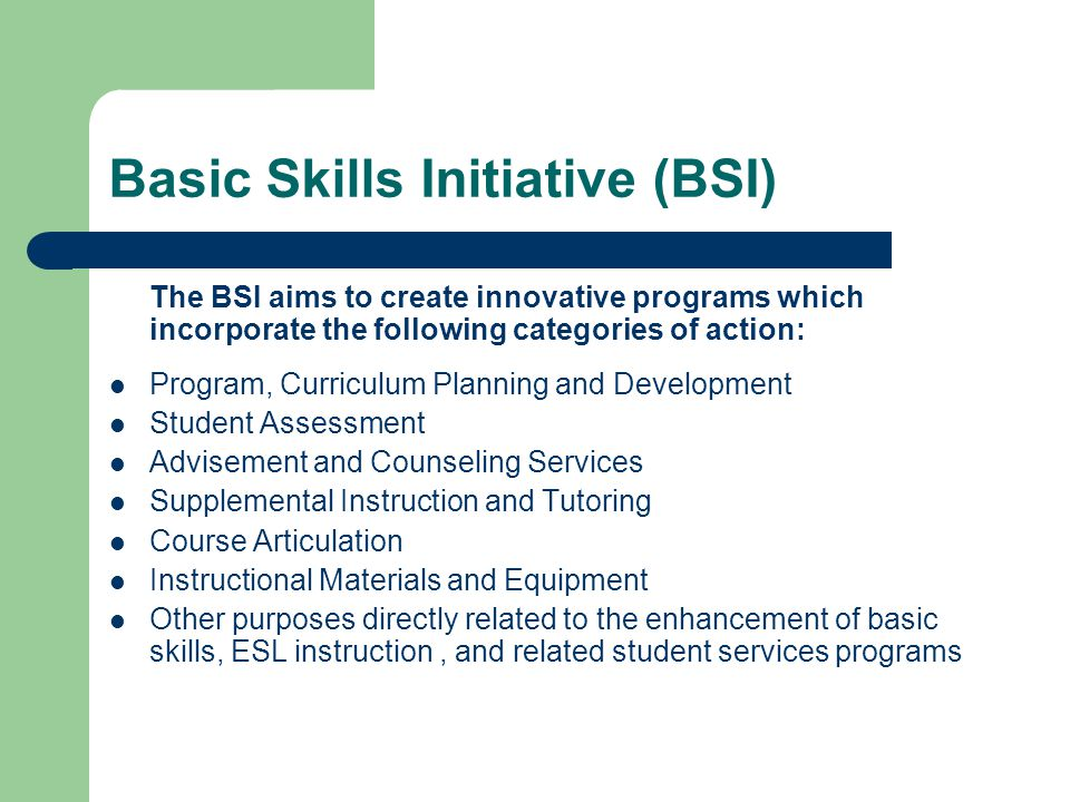 Basic Skills Initiative (BSI) The BSI aims to create innovative programs which incorporate the following categories of action: Program, Curriculum Pla