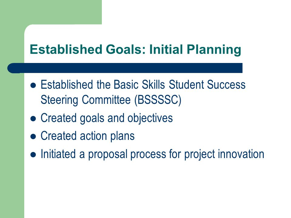 Established Goals: Initial Planning Established the Basic Skills Student Success Steering Committee (BSSSSC) Created goals and objectives Created action plans Initiated a proposal process for project innovation