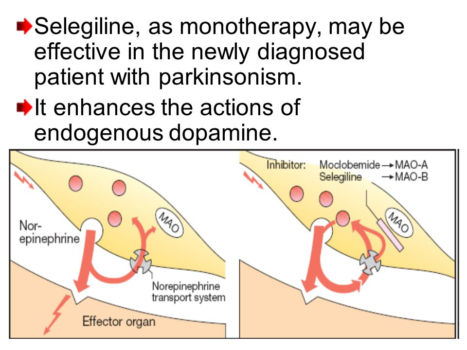 Selegiline, as monotherapy, may be effective in the newly diagnosed patient with parkinsonism. It enhances the actions of endogenous dopamine.