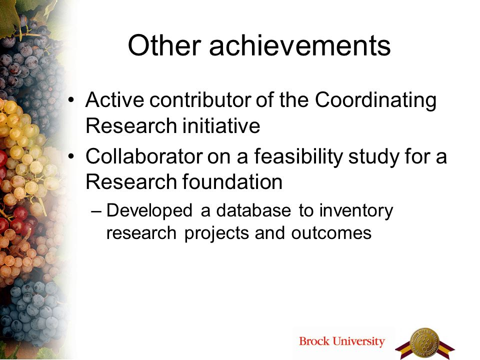 Other achievements Active contributor of the Coordinating Research initiative Collaborator on a feasibility study for a Research foundation –Developed