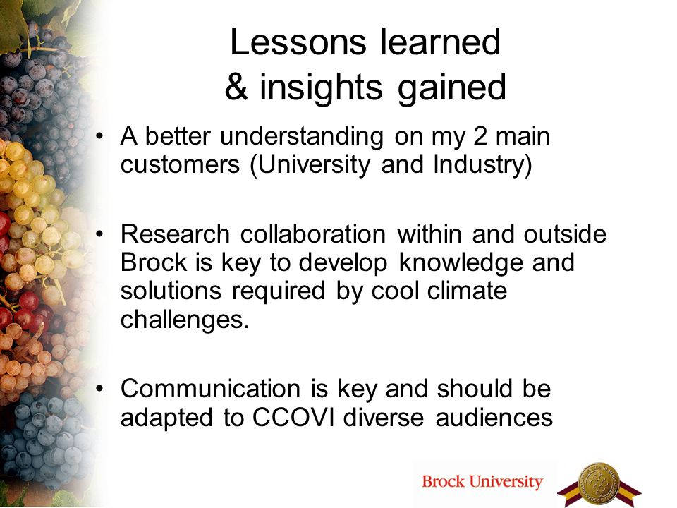 Lessons learned & insights gained A better understanding on my 2 main customers (University and Industry) Research collaboration within and outside Br