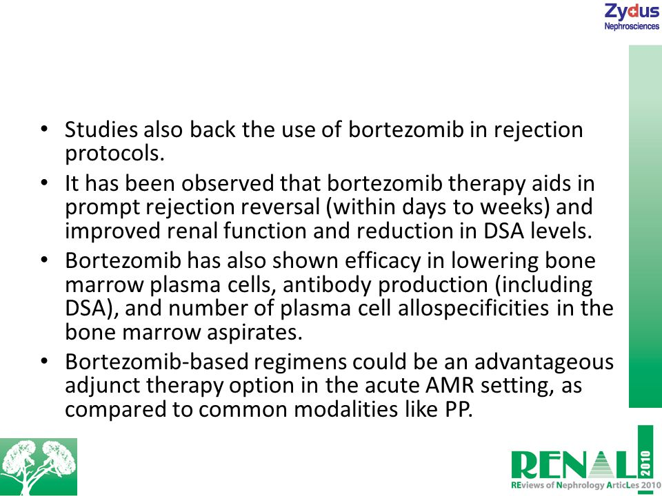 Studies also back the use of bortezomib in rejection protocols.