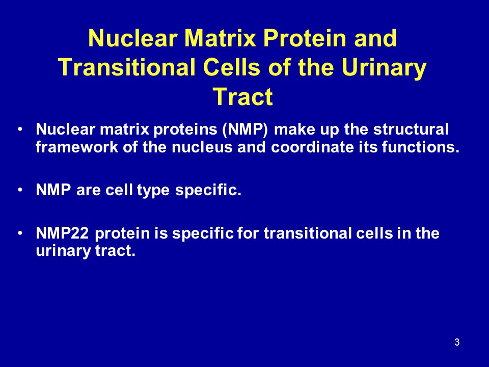 3 Nuclear Matrix Protein and Transitional Cells of the Urinary Tract Nuclear matrix proteins (NMP) make up the structural framework of the nucleus and coordinate its functions.