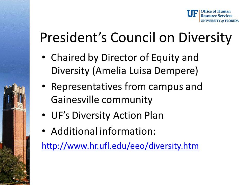 President's Council on Diversity Chaired by Director of Equity and Diversity (Amelia Luisa Dempere) Representatives from campus and Gainesville community UF's Diversity Action Plan Additional information: http://www.hr.ufl.edu/eeo/diversity.htm