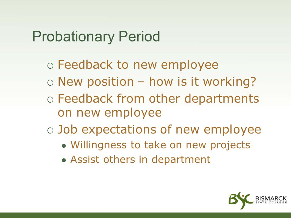 Probationary Period  Feedback to new employee  New position – how is it working?  Feedback from other departments on new employee  Job expectation