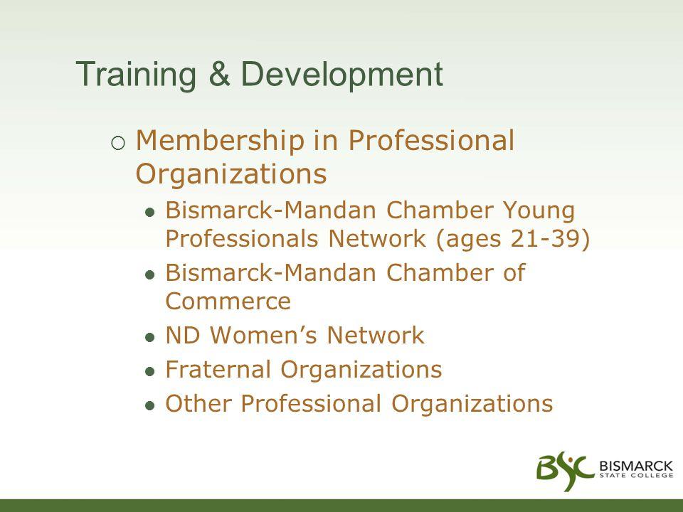 Training & Development  Membership in Professional Organizations Bismarck-Mandan Chamber Young Professionals Network (ages 21-39) Bismarck-Mandan Chamber of Commerce ND Women's Network Fraternal Organizations Other Professional Organizations