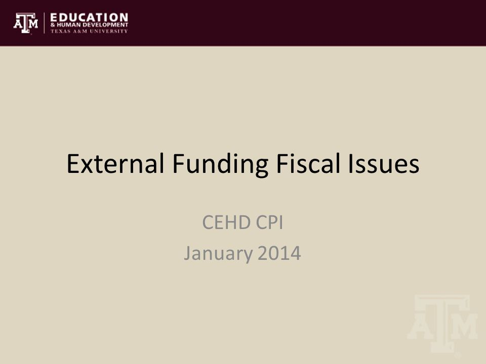 External Funding Fiscal Issues CEHD CPI January 2014