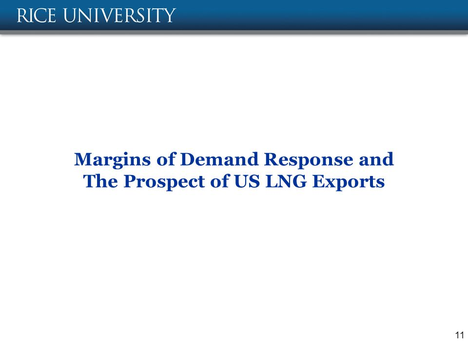 Margins of Demand Response and The Prospect of US LNG Exports 11