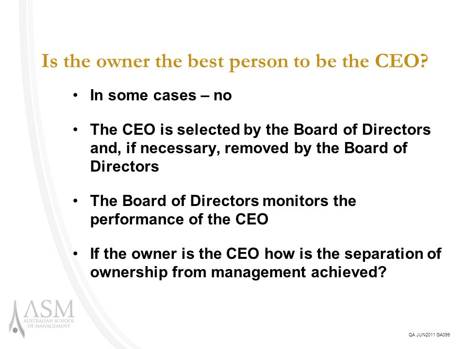 Is the owner the best person to be the CEO.