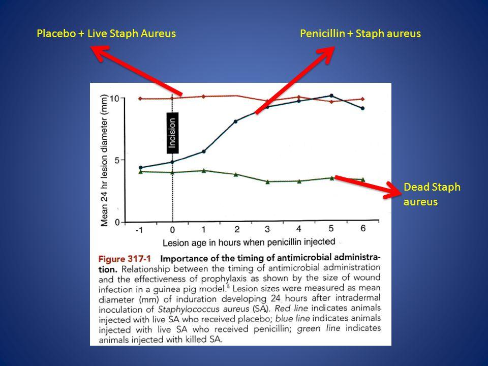 Placebo + Live Staph AureusPenicillin + Staph aureus Dead Staph aureus